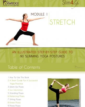 Stretch An Ullustrated Step By Step Guide To 90 Slimming Yoga Postures