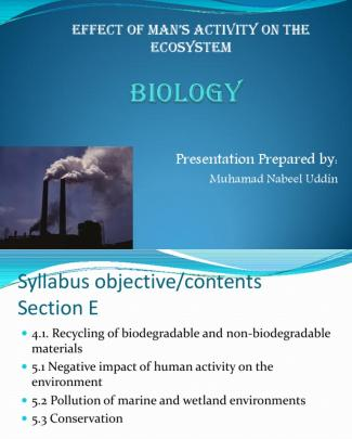 Effect Of Human Activity On The Ecosystem