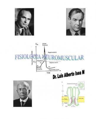 Fisiologia Neuromuscular 2011