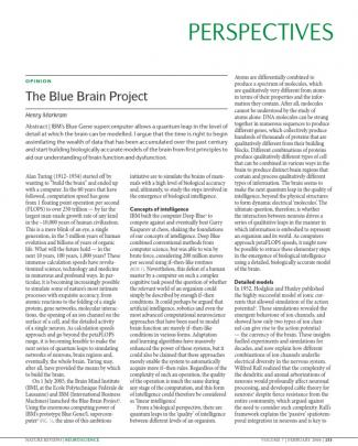 Mark Ham - Blue Brain Project
