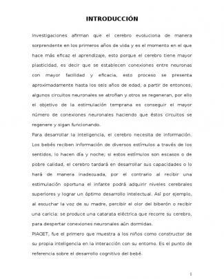 Informe De Investigacion - Estimulacion Temprana