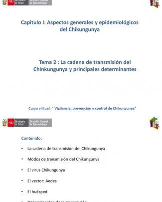 Cap I Tema Ii Cadena De Transmision Del Chikungunya