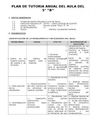 Plan De Tutoria Anual Del Aula Del 5